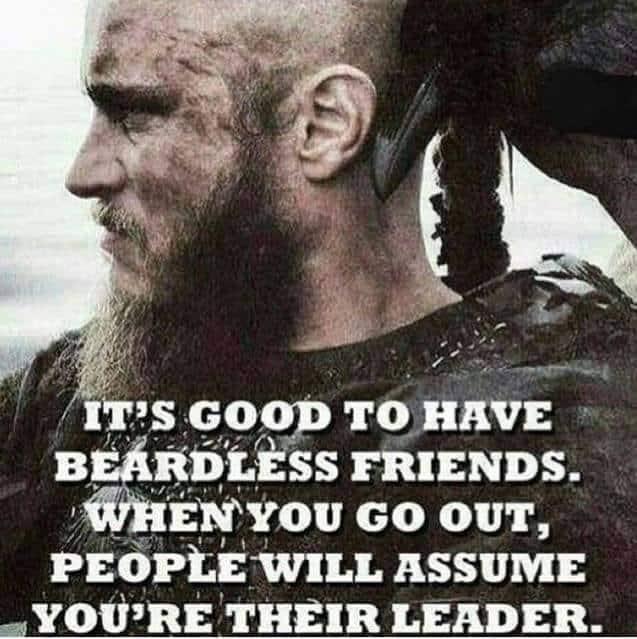 Power of Beard from beardoholic.com_ best beard memes and quotes beardoholic