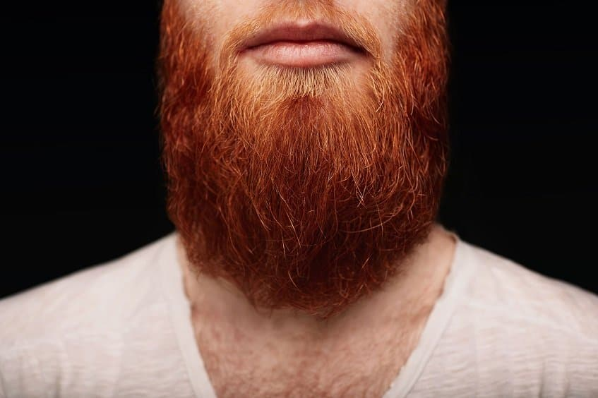 Pros and Cons of Ginger Beards