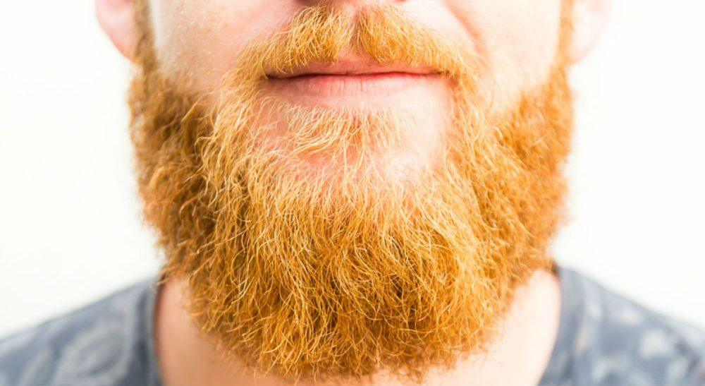 The Mystery Behind Guys With a Ginger Beards