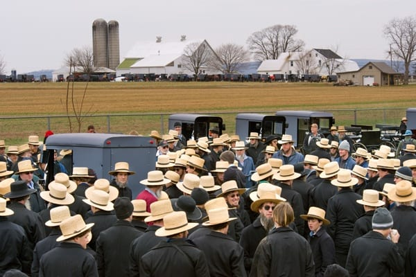 Amish Beard: Everything You Need To Know - Beardoholic