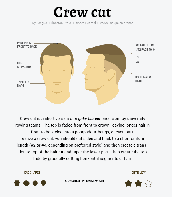 What is a Crew Cut