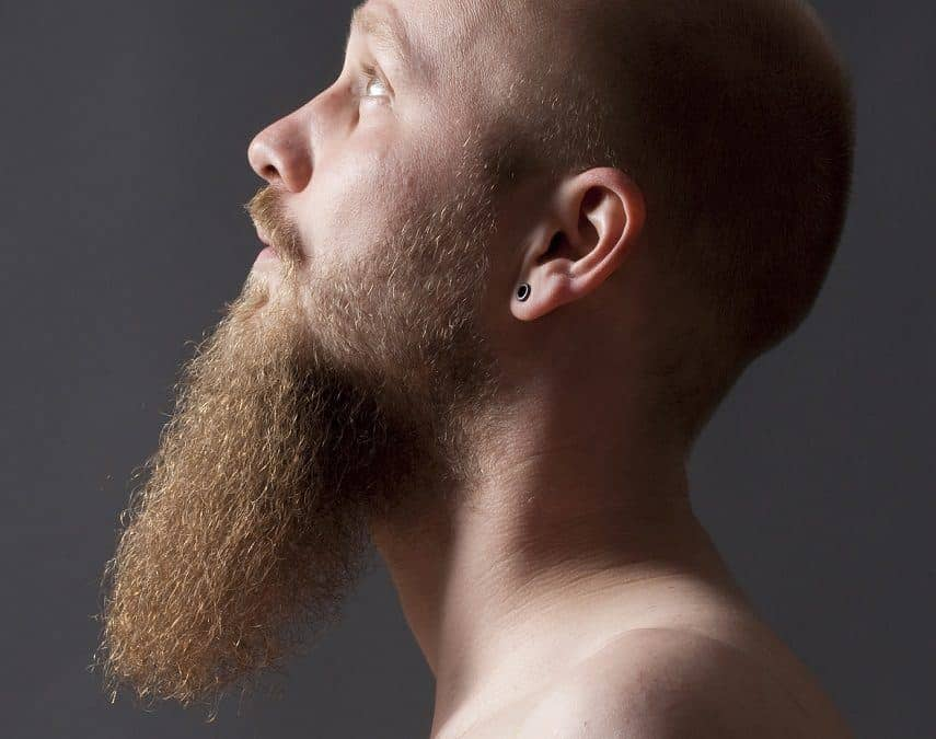 Want To Grow A Long Goatee? Here Is Everything You Need To Know