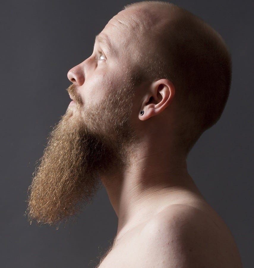 Want To Grow A Long Goatee? - Here Is Everything You Need To Know